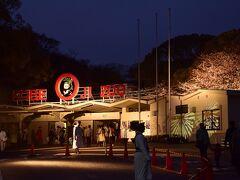 というわけで、すっかり日も落ちた神戸市立王子動物園にやって来ました