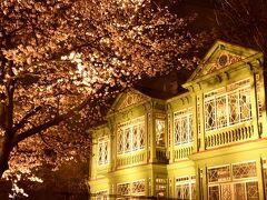 綺麗に光輝く夜桜トンネルに包まれた旧ハンター住宅のお姿がとっても見事でありましたねw 最後に一枚パチリ☆して神戸市立王子動物園を後にしました