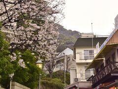 この時期限定の色華やかな風景が続く北野坂を登っていき・・・