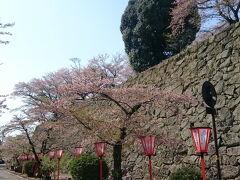 鶴山公園へ到着。 観光センターの前の駐車場へ。(¥500)  階段を上がり入口付近まで行きましたが、桜はすでに散り始めていました。 入場料(¥300×2人)を払って入場するのがもったいないので引き返す。