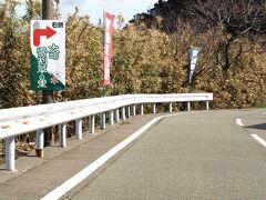 食後、海岸通りを南下、柏崎「大崎雪割草の里」(  http://www.niigata-kankou.or.jp/sys/data?page-id=10760 )に到着。