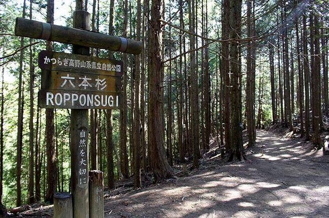 高野参詣道三谷坂を歩く