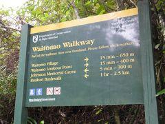 ワイトモ洞窟の予約時間までに、周辺を散策しました
