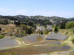 松之山周辺は棚田が多いことで有名な地 そこで最初の目的地は儀明(ぎみょう)の棚田 棚田に満たされた水は雪解け水 この辺り数週間前はまだ雪に埋もれていました