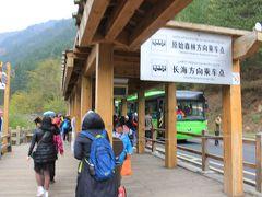ようやくバス乗継地 グリーンバスが次々に、皆座って行けます  ただ長海or原始森林往きか、乗ってみないとわからない