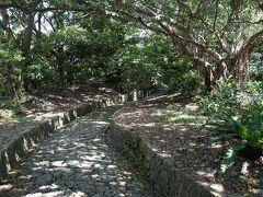 入口から進むとうっそうとした樹木の間に石畳の道が続きます。 こちらはバリアフリー対応になっていないので母は留守番。