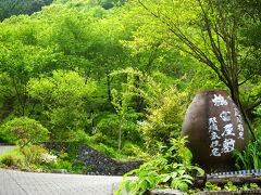 ひとしきり撮影した後、 再びそろそろと椎葉村に戻ってきました。  せっかくなので、 平家落人伝説の発祥の地、 鶴富屋敷を訪問。
