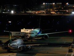 深夜の羽田から出発。搭乗便はANA839便(現821便)で機材はJA615Aでした。