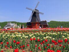 公園は中央に風車が回り美しい景色です。