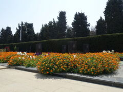 その足元からつづくのが、殉死者の小道。  1991年から94年のナゴルノ・カラバフ紛争や、1990年のソ連軍侵攻の犠牲者のお墓が花の中に佇んでいました。