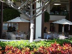 夕飯は、夜になってもお腹が空かないので、 軽く飲むつもりでホテル内のレストランへ。 「レインボーラナイ」です。  (これは昼間撮った写真ですが・・・)