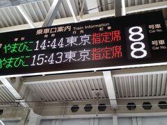 やまびこ144号にに乗車します。始発です。 Mは元大家さんのお宅に行くそうなので、駅でお別れ。 14:44発 16:48東京着 1か月前にチケットを購入したので3割引き 7470円