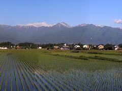 """深夜に神奈川の自宅を出発、中央道を経由して安曇野ICを出た頃に日が差してきました。 安曇野のシンボルの""""常念岳""""に朝の黄色い日があたり独特の色合いとなり、植えたばかり稲田に常念岳が写りました。"""
