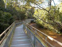 アッパートレイルは全長1750mの一方通行の遊歩道。 後半は滝から離れ、川の上やジャングルの中を通っている。  遊歩道はどこもこんな風に整っており、天気が良ければ足元が濡れたり泥だらけになる心配はない。