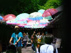 ちょうどお昼時 ハルニレテラスでランチです。  梅雨の季節感を演出するアンブレラスカイが美しい。