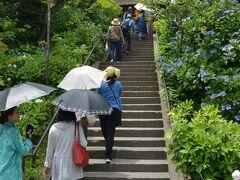 東慶寺へ  縁切寺の東慶寺。 ここは、四季折々の花を楽しませてくれる。