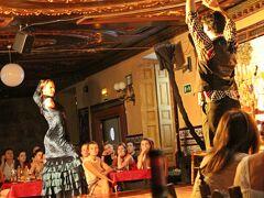 中盤で男性のBailaorも加わり、二人の踊り手が繰り出す踊り(動き)に、その場が支配されてしまう。