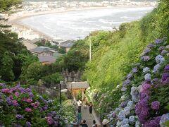 成就院のアジサイも見たかったが  これは、6年前の成就院のアジサイ。2015年(平成27年)から2017年(平成29年)までアジサイ参道の工事などで、この景色は見られない。 来年のお楽しみか。  成就院のアジサイ旅行記。 http://4travel.jp/travelogue/10577853
