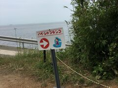 """島の東端に""""ハイジのブランコ""""なる案内表示を見つけました。 何だろう…"""