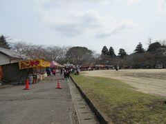 公園は広く、いつもなら桜祭りで人がいっぱいみたいですが……。桜は1~2分咲です。なおこの奥が本丸になります。