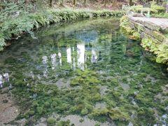次に向かったのは南阿蘇村の白川水源です。
