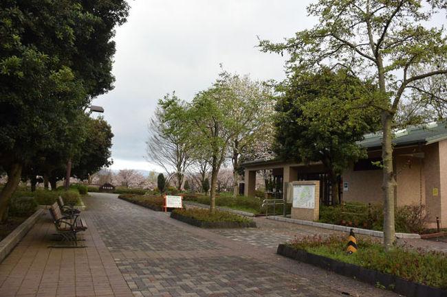 富士 西 公園