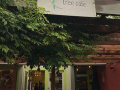 オリーブ・ツリー・カフェは  カプチーノが美味しく何度も行きました