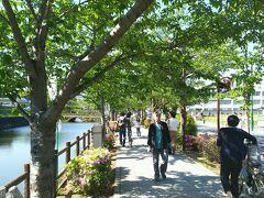 小田原城のお濠近辺を散策です。