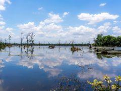 続いて向かったのは、ニャック・ポアン遺跡....なのだが、この遺跡はいま現在、洪水の影響と崩落の危険から遺跡の手前までしか入れなくなっている。_| ̄|○ orz....  駐車場からばかでかい池を橋で渡ります。 池に青空が映って綺麗です。
