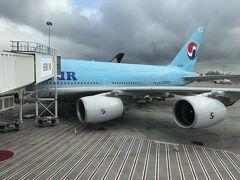 大韓航空でシドニーからインチョンへ、乗り継いで関空に戻りました