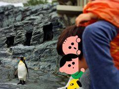 室内トンネルでペンギンみたかったのに、 ちょうど全ペンギンお外にいました、。