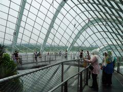 シンガポール最終日!マリーナベイサンズ横の植物園に行きました。 ここは中が涼しくって(笑) 上着必須です!