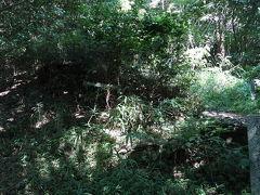 """道沿いに「山の神塚古墳」(6~7世紀頃?)があってちょいと覗いてみましたが、なんか木が生い茂ってなにがなんだかわからんまま戻ってきちゃいました(>_<"""") 保存状態は良いみたいで、石室も覗けたようなので、ちゃんと探せばよかったんだけど…"""