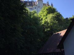お城を出た後は、 徒歩でノイシュヴァンシュタイン通りをふもとまで下ります。