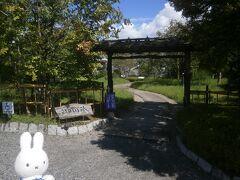 ヤマキ醸造屋さんに到着です。 中に入りましょう(^_-)-☆。