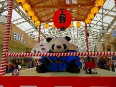 そして明治神宮前の山手線原宿駅から上野駅まで移動。  上野と言えば今話題のパンダの赤ちゃんですね。