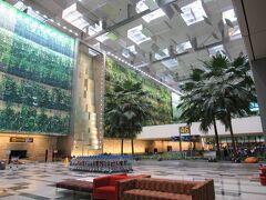 """6時間半のフライトを終え、チャンギ空港ターミナル3へ!  SQでは着陸するとすぐに、 """"Welcome to Singapore ladies and gentlemen,  and to all Singaporeans and residents of Singapore, a warm welcome home."""" というキャビンアテンダントのアナウンスが必ず入ります。  無事に着いたなぁとホッとする瞬間です。"""