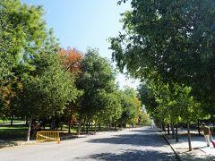 クラシコまで時間があるのでマドリード観光。 どうしても見たいトコはないが、見てみたいトコはいくつかあったので駆け足で回る。 最初はレティーロ公園。