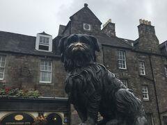 グラスマーケットを反対方向へ行くと、スコットランド版忠犬ハチ公の銅像が。  消防士の主人が亡くなってから死ぬまで14年間墓の前を守っていたという・・・。  14年間って長い!!  なんだか泣けてきます。