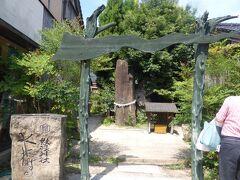 風変わりな妖怪神社