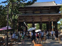 春日大社の出口?道まで戻ってから東大寺まで、徒歩15分くらいかなぁ、わりとすぐですが、東大寺のエリアが広い! たくさんのバスが止まってて、参道にもたくさん鹿がいます。写真は南大門。鎌倉時代の再建だそうですが、かなり古い感じがします。