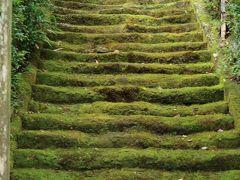 734年に行基が建立した鎌倉最古の寺。  苔むした石段がひたすら見たかった。 この石段は立ち入り禁止です。