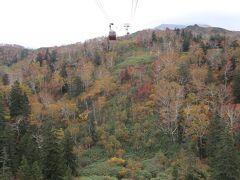 旭岳温泉からロープウェイで登る空中散歩中の風景は、高度ごとに紅葉の感じが違っていて、見ごたえがあります