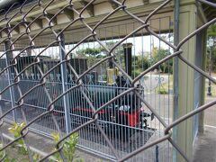 隣の梅津寺公園には坊ちゃん列車が展示されていました 今度またゆっくり 入園料は50円