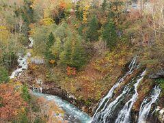 次は白ひげの滝へ。 予想以上の絶景なり! 少し曇っていて山はくっきり見えませんが、紅葉という意味では、1番良い時期に来れた気がします。