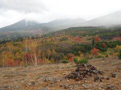 それから十勝岳望岳台へ。 こちらも曇っているけれど、紅葉が素晴らしい色彩。