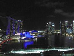 見ても見ても見飽きない風景。 のんびり食べながら,シンガポールの夜景を満喫しました。  明日は,最終日。 リベンジシリーズ…前回行けなかったフラワードームへ。