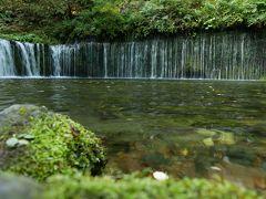 白糸の滝。 中国系、東南アジア系、南米系の人および 三脚持ちの写真家の方たちでいっぱいです。 なんとか撮りました。