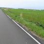 景色があまり変わらないので、自転車をこいでもこいでも進んでいないような錯覚を覚えます。でも、それが良い。