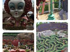 日本にはないアリス・イン・ワンダーランドのアトラクション、キャラクターで装飾された庭を周るのですが、色鮮やかなので写真スポットになっています。 クィーンズヘッドはちょっと怖い感じです。